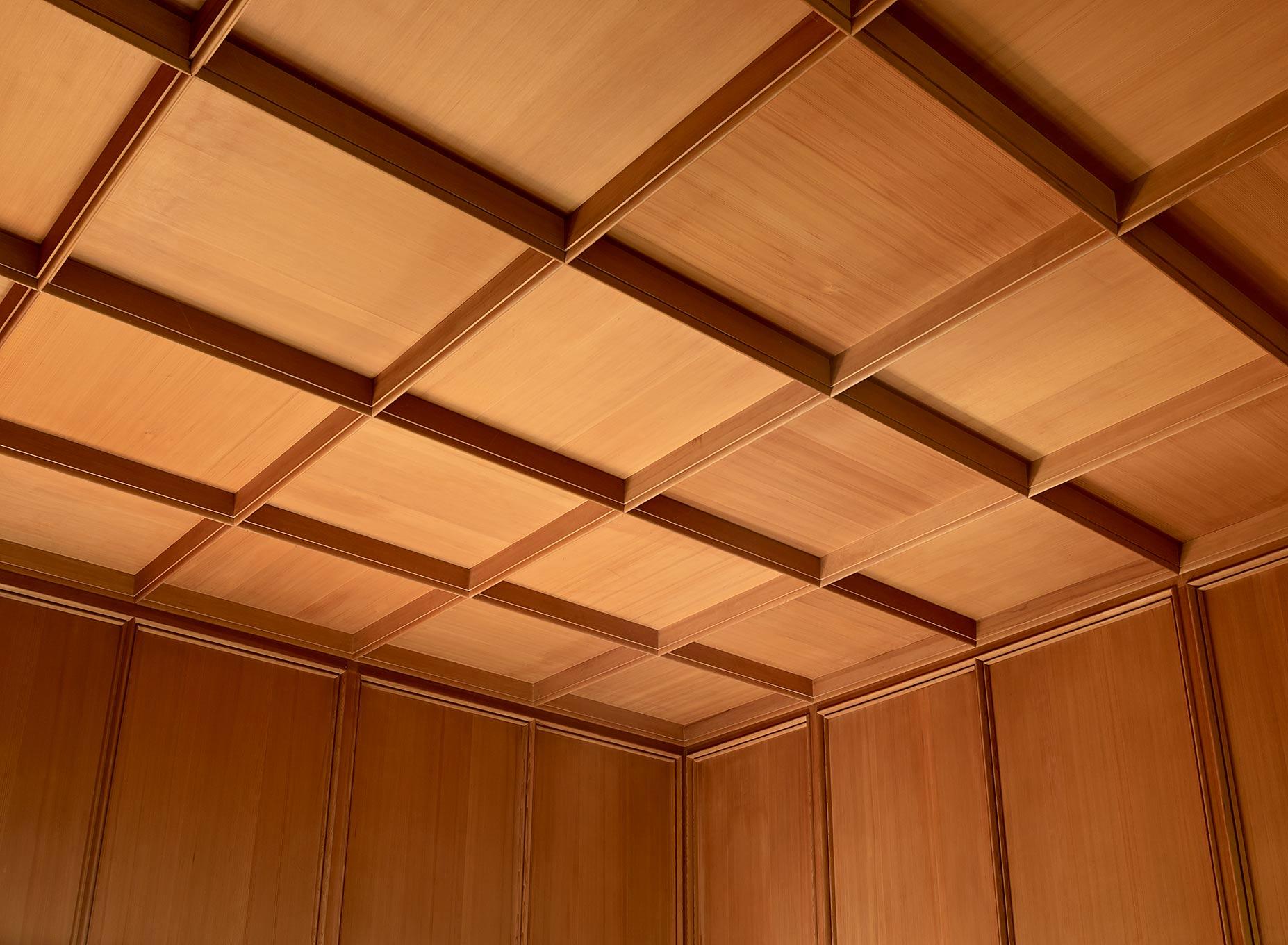 Watzek ceiling
